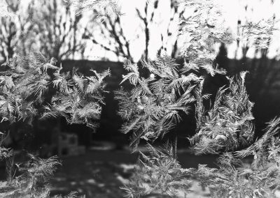 Frost on my house—Colorado, 2013