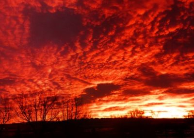 Backyard sunrise—Colorado, 2011