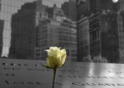 9/11 Memorial flower, 2017