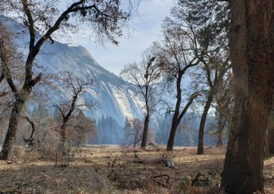 Yosemite Valley, 2019